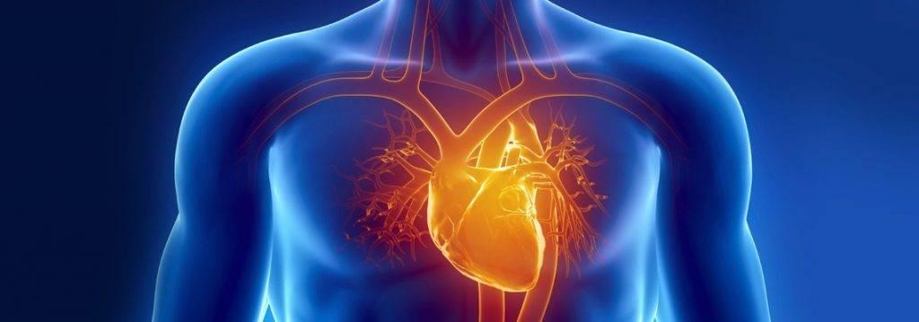 بیماری های قلبی - عروقی در سایت دکتر حمید رضا صنعتی فوق تخصص قلب