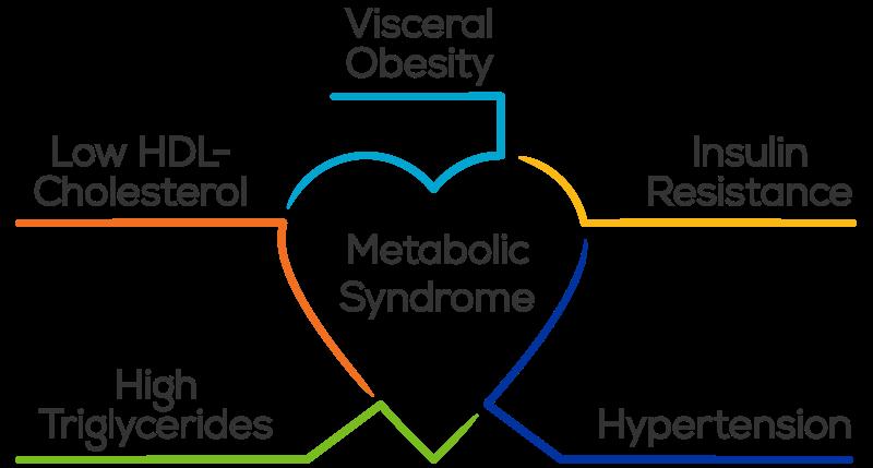 ریسک ابتلا به بیماری قلبی دکتر حمید رضا صنعتی- فوق تخصص قلب و عروق-بهترین روش تغذیه خوب-دکتر قلب تهران-سندروم متابولیک-metabolic syndrome