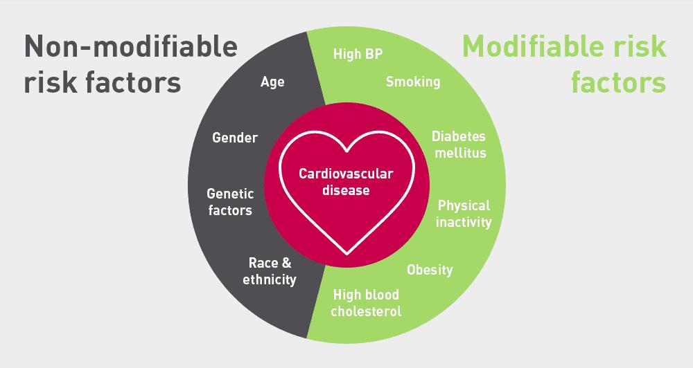 فاکتورهای خطر بیماری های قلبی عروقی-دکتر حمیدرضا صنعتی بهترین فوق تخصص و متخصص قلب و عروق خوب در تهران_modifiable_risk_factors_for_cardiovascular_disease